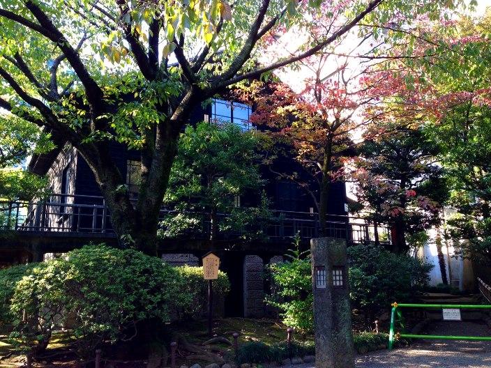 六本木の小春日和 - 乃木神社さんぽ