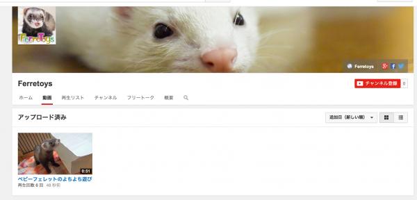 1本目の動画をアップしてみよう。テストなら公開範囲を「非公開」にしよう